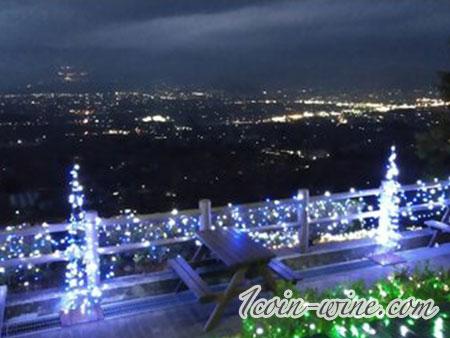 甲州市勝沼ぶどうの丘のライトアップ